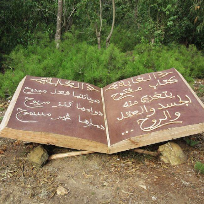 FLATTA 17 Abdou Abdeslam BOUGRINE Le livre à nakkata Bdef